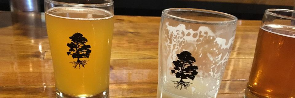 Charleston Ale Trail | Twisted Cypress Brewing Co.